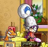 Maple0032aba.jpg