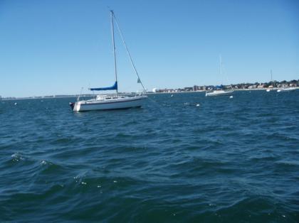 Cub_sailing01.jpg