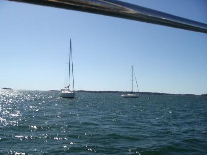 Cub_sailing02.jpg
