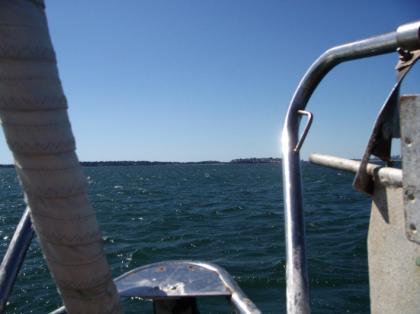 Cub_sailing04.jpg