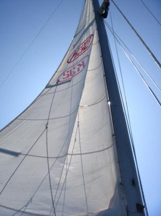 Cub_sailing18.jpg
