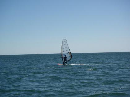 Cub_sailing21.jpg