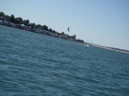 Cub_sailing22.jpg