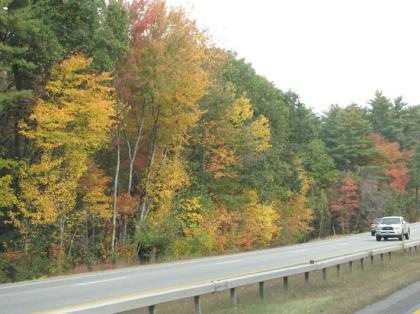 fall_foilage_NH209_03.jpg
