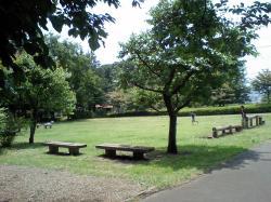 20080526-5.jpg