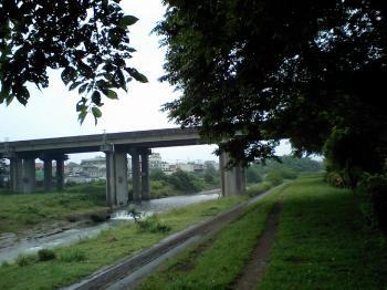 20080609-1.jpg