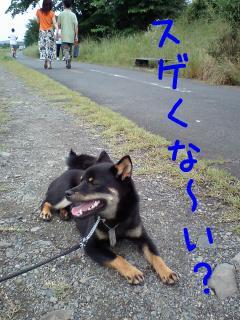 20080623-002.jpg