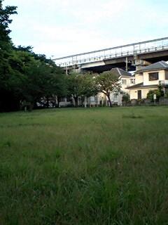 20080703-01.jpg