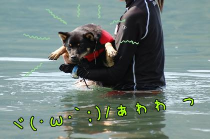 20080811-4.jpg