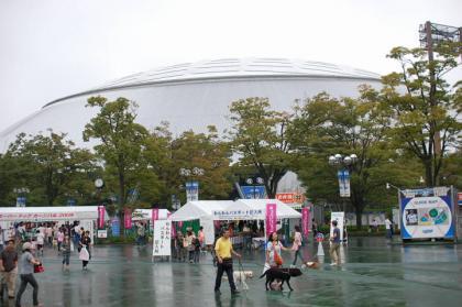 20080921-2.jpg