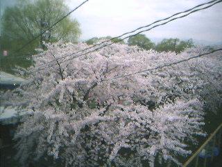 kitagami_1_4[1]