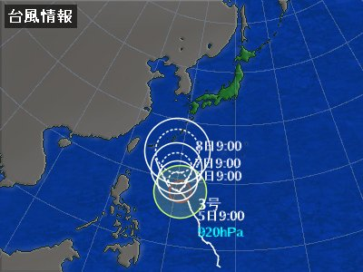 typha18.7.5-1.jpg