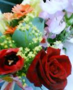 20060329_1616_002.jpg