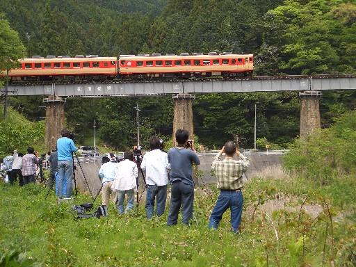matubouki1.jpg