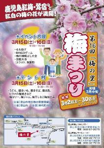 津山市久米梅の里公園 2008年「梅祭り」