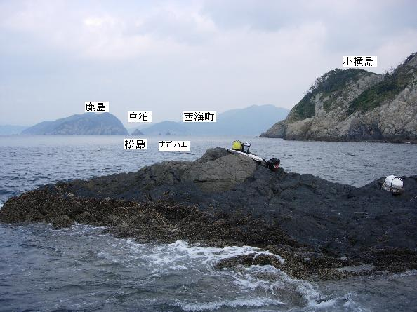 DSCN4159中泊