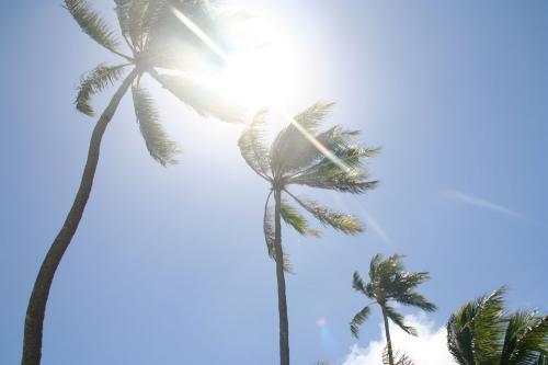 オアフ島 ハワイ旅行 夏休み