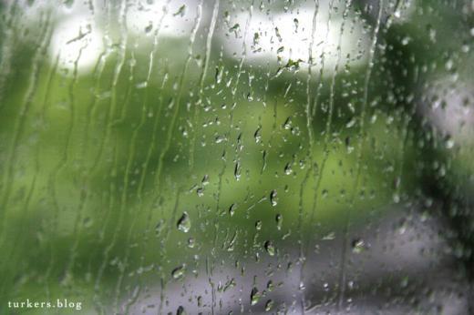 4月の雨 タクシー