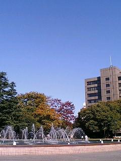 県庁前公園1