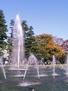 県庁前公園3