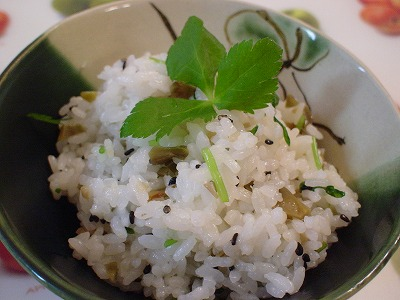 ザー菜と三つ葉の混ぜご飯