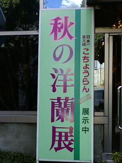 20091114152302.jpg