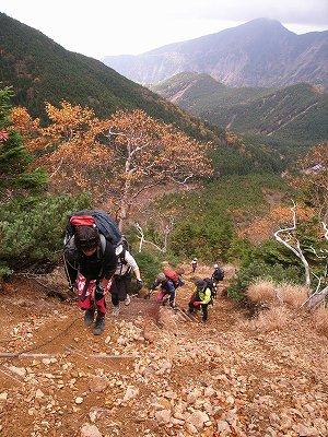 八ヶ岳2008_2