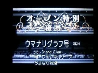 オープン特別優勝_グラフ_081118