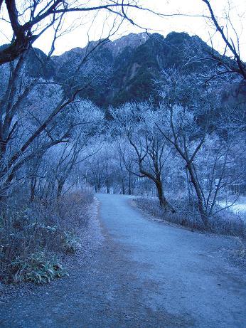 霧氷の朝2