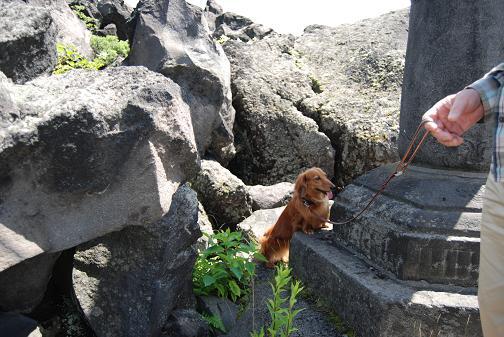 岩影で休憩