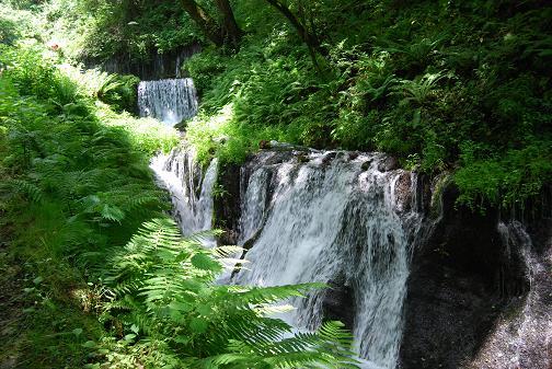 白糸の滝2008 036