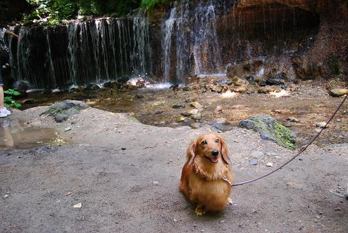 白糸の滝⑤