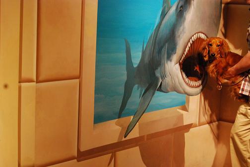 サメに食べられちゃう~