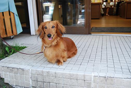 軽井沢旅行2008 16⑥