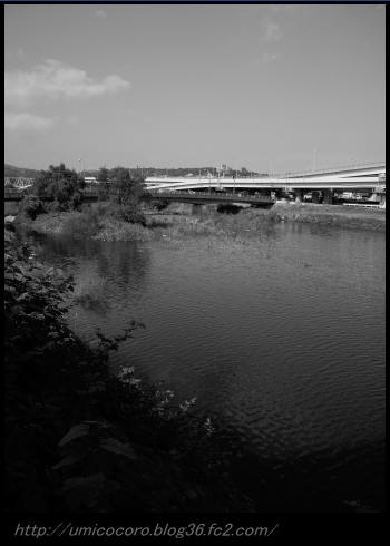 川だよ。。。