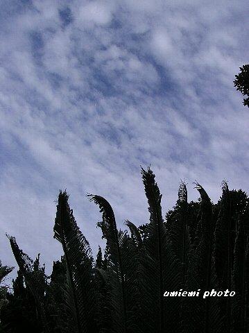 雲が渦巻き~