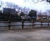 20060313095201.jpg