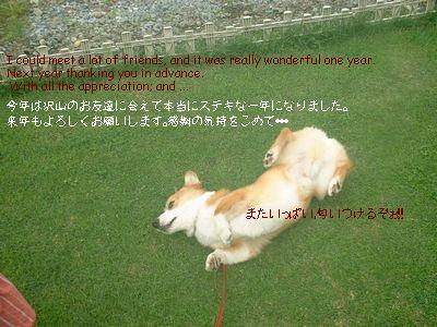 DSCF0011_20071224112041.jpg