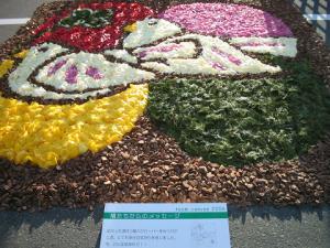 花キャンバス「鳩たちからのメッセージ」