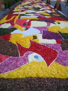 花キャンバス「カミノレハーノ ―遠い道のり―」