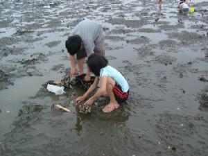 2006,6siohigari3.jpg