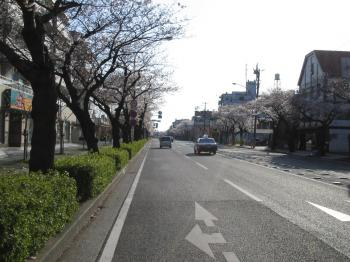 20080329_01.jpg