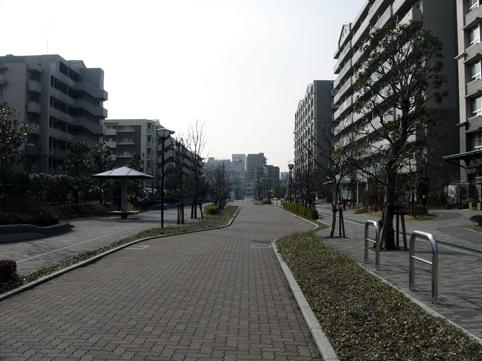 20070303.jpg