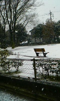 snow2008-01.jpg