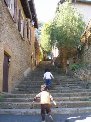 ボジョレー階段