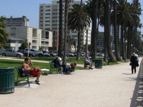 tnn_Ocean Ave2