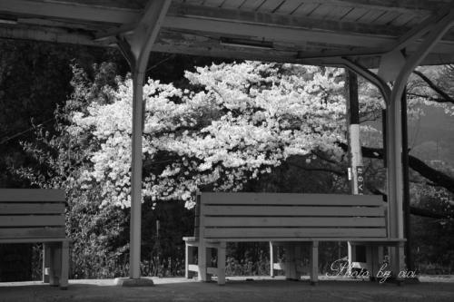 田野口駅04