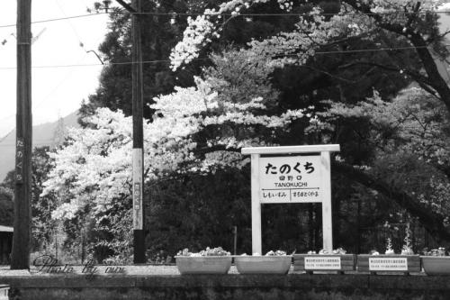 田野口駅01