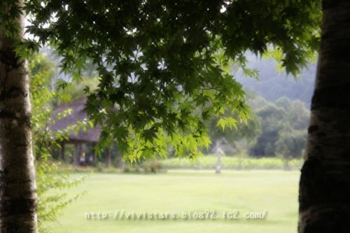 野鳥の森公園02