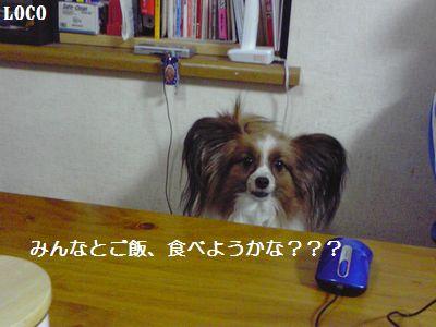 100125blog4.jpg
